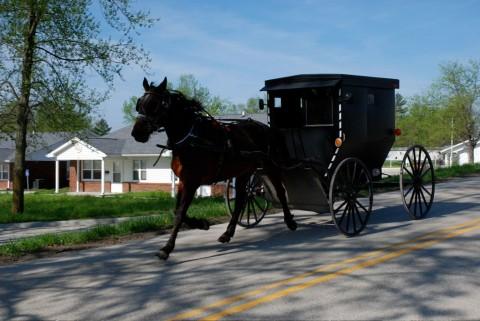 Mit der Kutsche durch die Krise: Wie die Amish selbst, ist auch ihre Zeitung relativ resistent gegen den Abschwung.