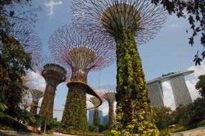 How much are 3 days in Singapore incl. Gardens by the Bay & Hiking