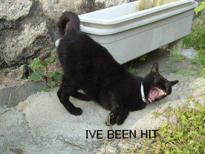 I've been hit