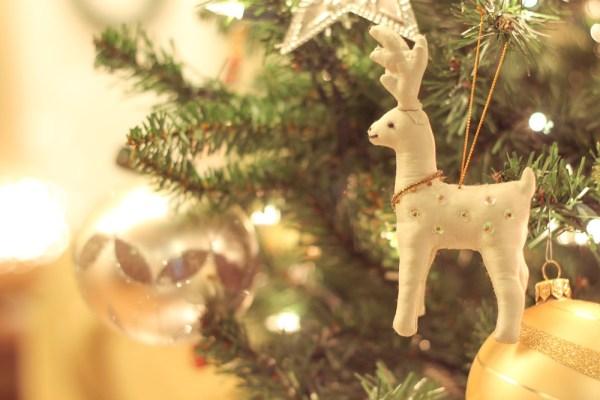 Christmas Tree Lights-8