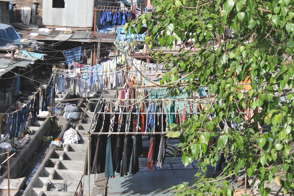 Dhobi Ghat Mumbai-11