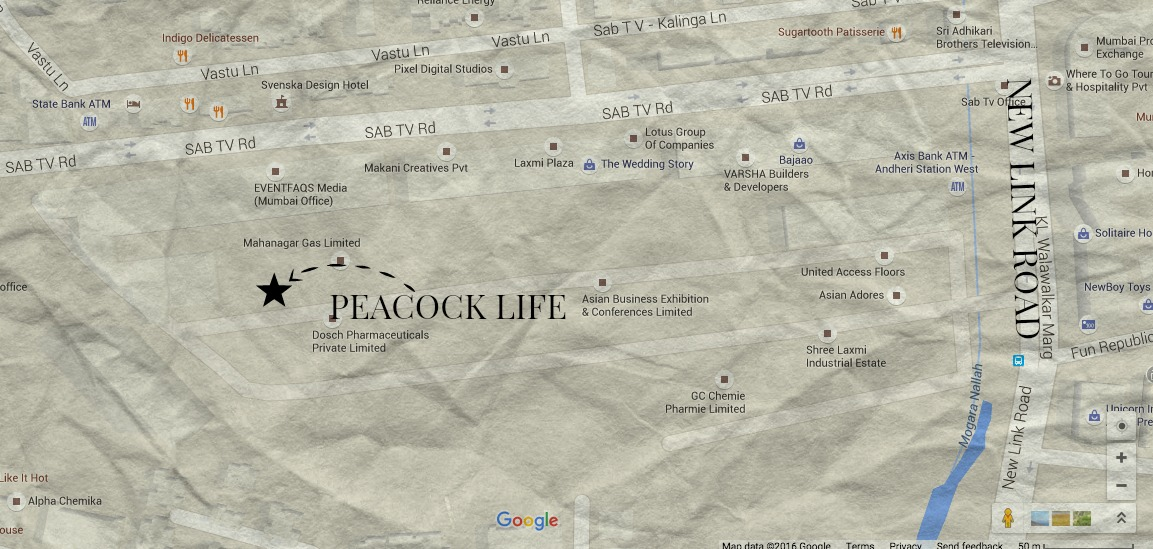 PEACOCK LIFE LOCATION