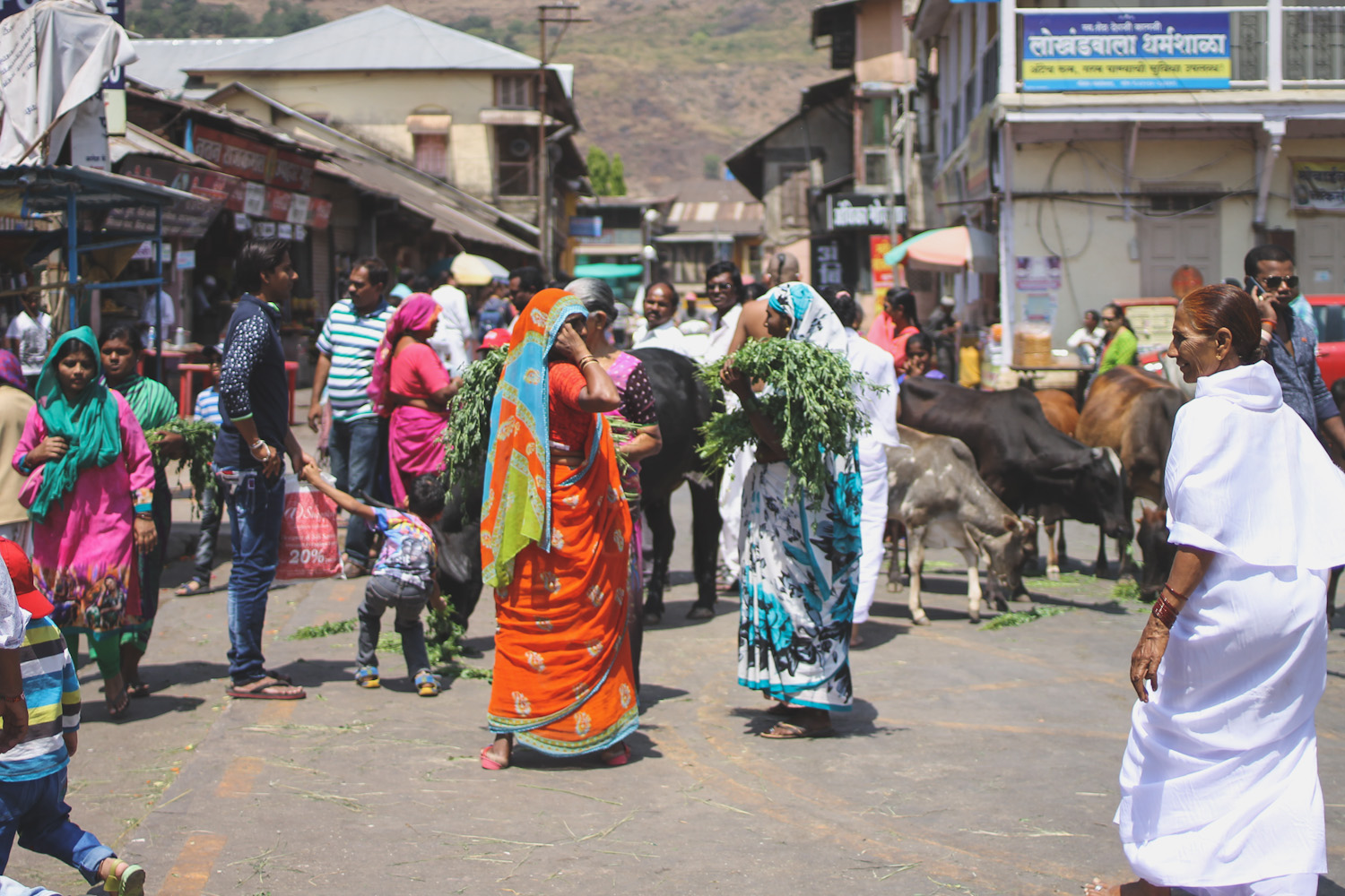 Trimbakeshwar Temple-11