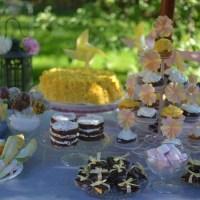 Backyard Yellow/Pink Themed Birthday Party