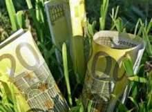 euro agricoltura