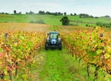 finanziamenti-agricoltura