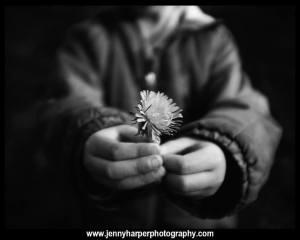 jennyharperphotography