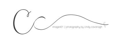 image421-6b