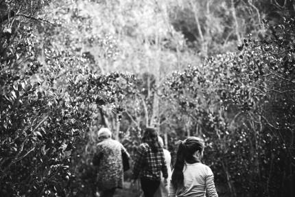 sydney family photography - family at Bobbin head