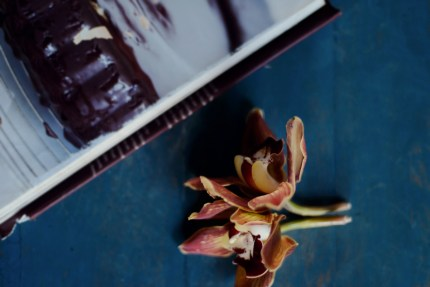 Sydney Photographer: Still life of flower and cooking book