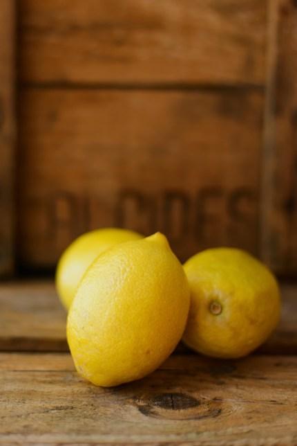Sydney Photograper: Still life of citrus