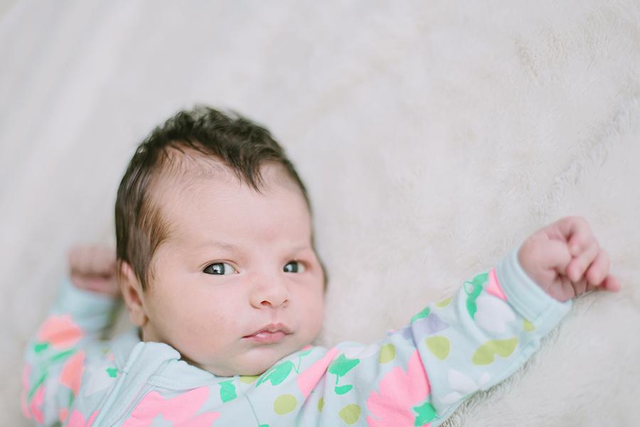 Baby portraits: Newborn portraits in Sydney