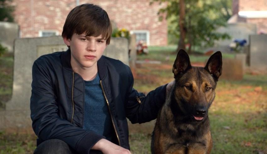 "Josh Wiggins stars in Warner Bros. Pictures' ""Max"""