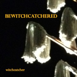 Bewitchcatchered_coverart_correct