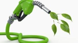 Key Energy: i lubrificanti Mysella per la cogenerazione