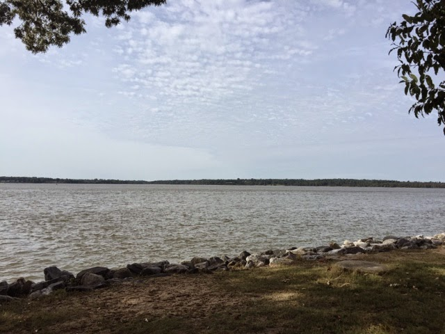 "Looking across the James River. Richard Pace's ""Pace's Paines"" lands were located on the far bank."