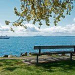 Myrtle Edwards Park Bench