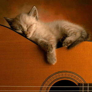 cropped-icon-classical-guitar-1-1.png