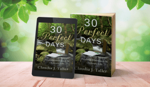 30 Perfect Days - display