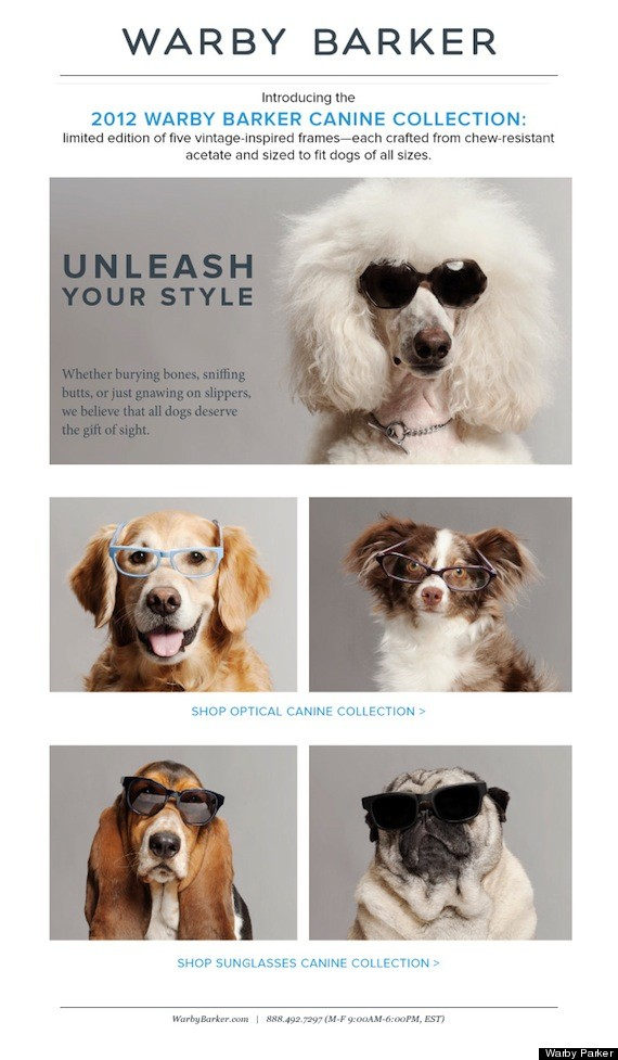 Warby Barker Canine Sunglasses April Fools