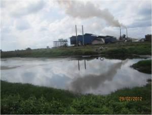 palm_oil_mill_effluent