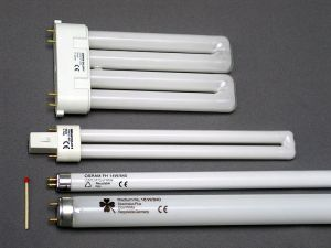 compact_fluorescent_light