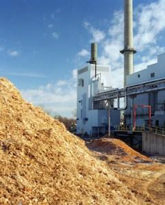 bioenergy-conversion