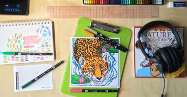 Cleverpedia + Color With Music Baker's Dozen Giveaway