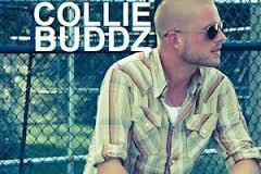 CollieBuddz1