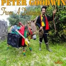 PeterKushGoodwin:FromADistance