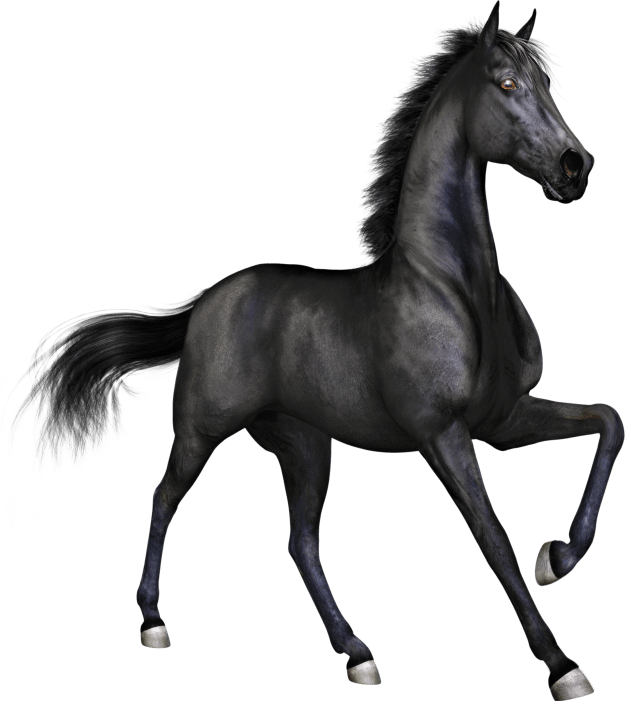 Free Thoroughbred Horse Clipart