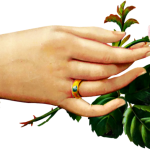 Free Victorian Hand With Rose