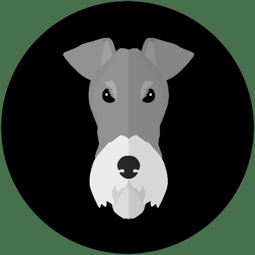 INICIO FOX