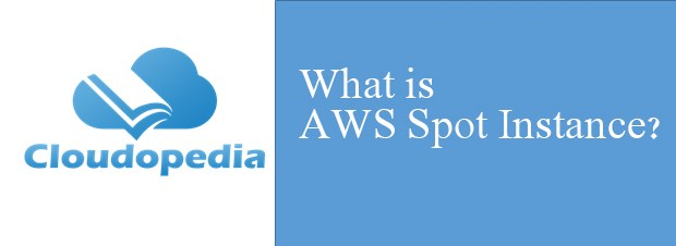 Definition of AWS Spot Instance