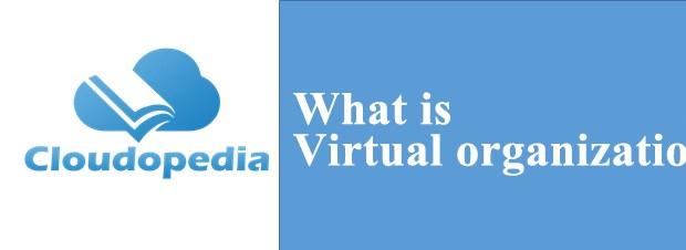 Virtual organization
