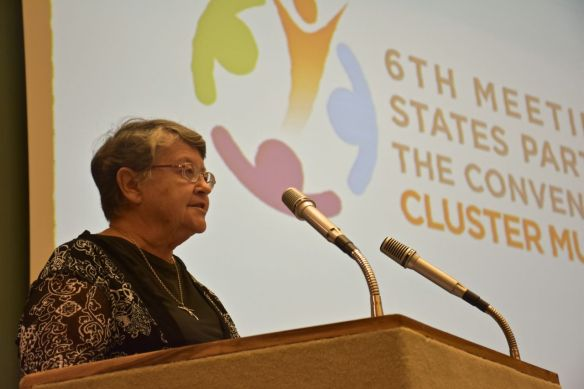 Sister Denise Coghlan, Director of the Cambodia Jesuit Refugee Service and founding member of the Cluster Munitions Coalition, which was instrumental in bringing about the 2008 Convention, also participated.