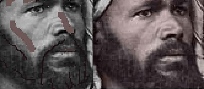 Colorizing Parts Face - Beard