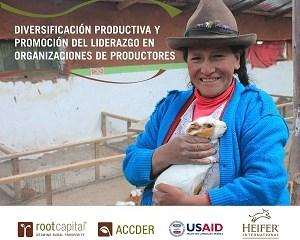Diversificación productiva y promoción del liderazgo Heifer Perú 300x264