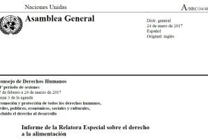 Informe Relatora Especial sobre derecho alimentacion