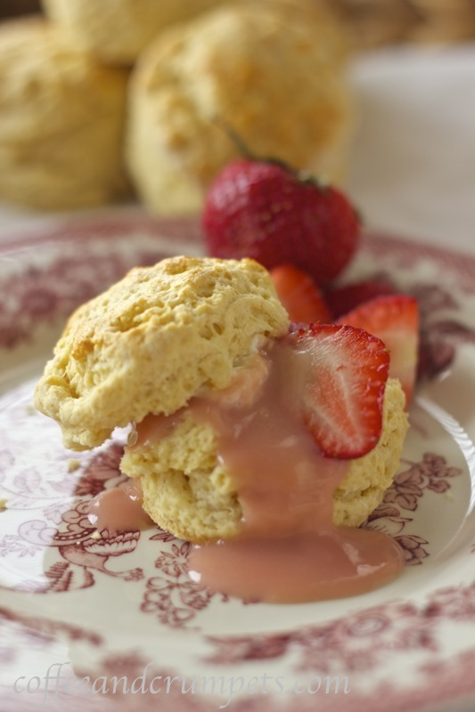 scone with rhubarb curd