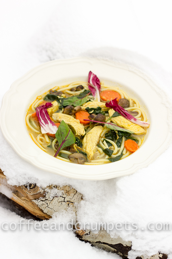 curried chicken noodle soup-5