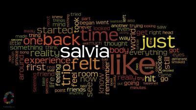 Blog - 700 Salvia Trips Summarised [Wordcloud]   Coffeesh0p