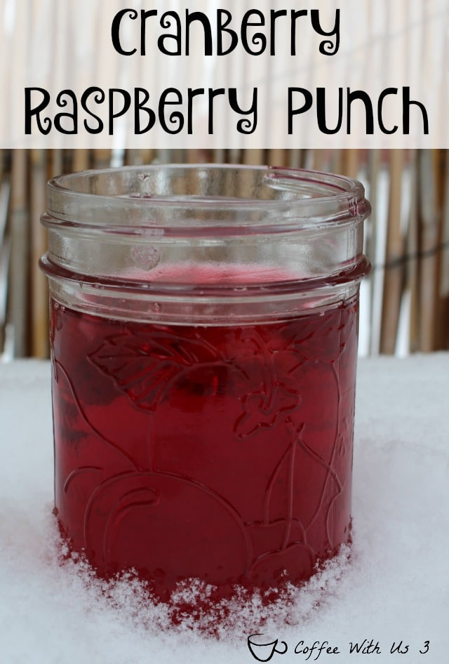 Tangy & Sweet & a beautiful deep red, this Cranberry Raspberry Punch is perfect for any occasion but is especially pretty for winter events!