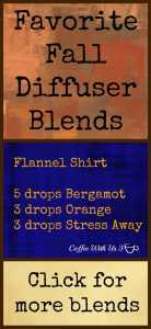 Fall Diffuser Blends that will give your home the warm comfy feeling of fall.