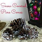 snow-covered-pine-cones-square