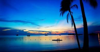 Source: Island Buzz Jamaica