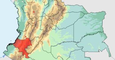 Source: Municipality of Totoro, Cauca, Colombia