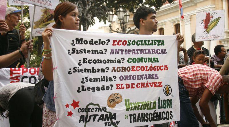 Protesta Antitransgenicos