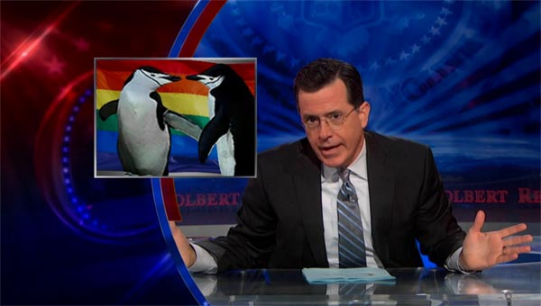 Stephen Colbert on gay penguins