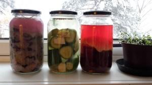 fermenting
